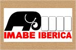 imabe 1